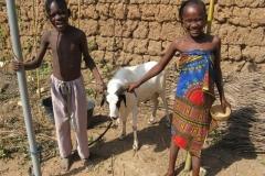 Kamerun-2011-2012-475-Medium